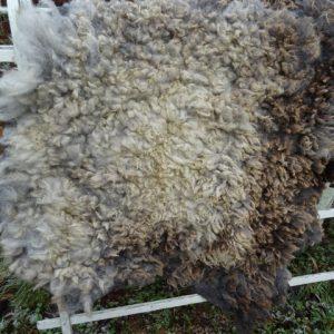 Grotere grijze of bruine schapenvachten