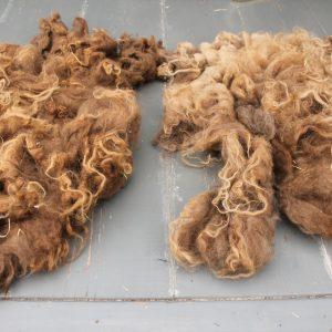 Doe-het-zelf wol en vacht